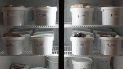 superbatch-fridge